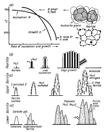 Bainite Formation Diagram